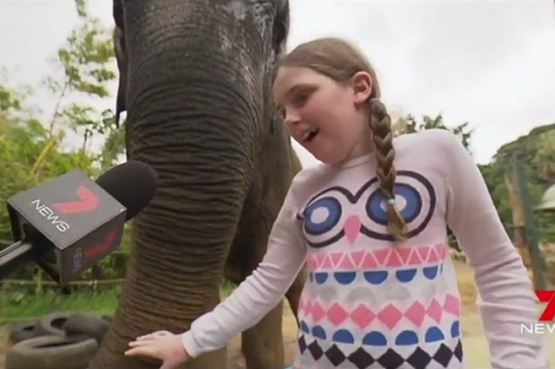 Olivia Riley becomes 2017 Little Telethon Star